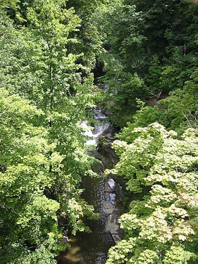 ithaca_gorge_upstream