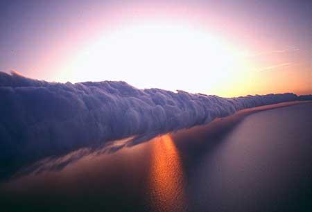 morningglorywave