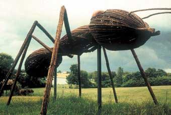 bigbug_ant